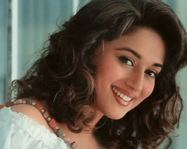 Madhuri Dixit Hit and Flop Movies List