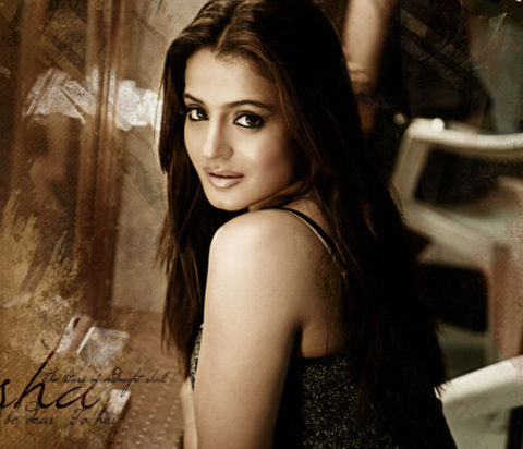 Ameesha Patel Hit and Flop Movies list