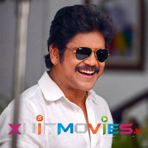 Nagarjuna Hit and Flop Movies List