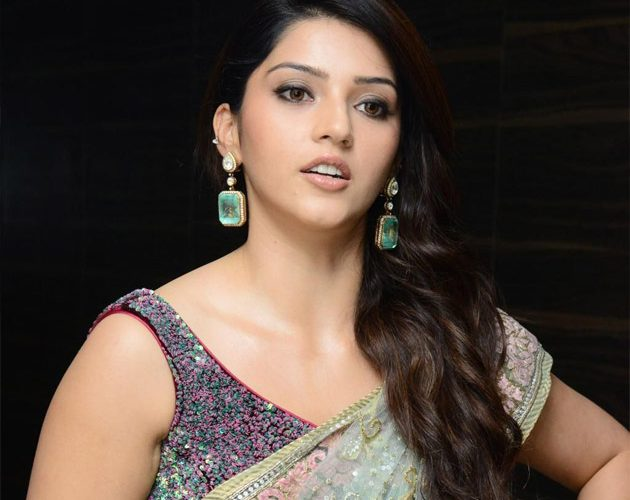 Mehreen Pirzada Hit and Flop Movies List