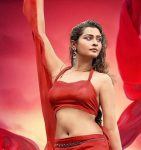 Payal Hit and Flop Movie List