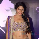 Lavanya Tripathi Hit and Flop Movies List