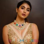 Pooja Hegde Hit and Flop Movies List